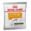 Royal Canin Energy 50 g Dog