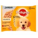 Pedigree Junior kurczak i indyk 4x100 g
