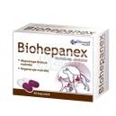 Biohepanex 40 kaps dla psów i kotów
