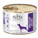 4Vets Natural Gastro Intestinal 185 g Dog