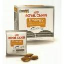 Royal Canine Dog Energy 30 x 50 g