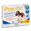 Prac-tic pies 11-22 kg 1 pipeta x 2,2 ml