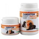 Caniviton Protect 30 tab