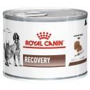 Royal Canin Recovery 195 g puszka Dog