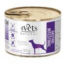 4Vets Natural Gastro Intestinal 185 g Dog
